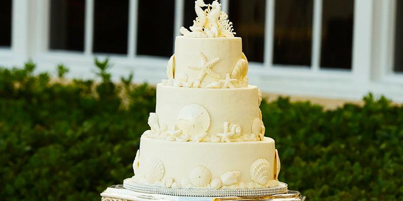 Nişan-Düğün Pastaları
